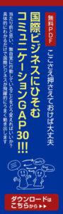 """""""ここさえ押さえておけば大丈夫 国際ビジネスにひそむコミュニケーションGAP 30!!!"""""""